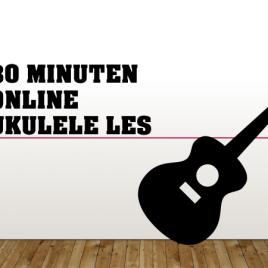 Online ukulele privé les 30 minuten